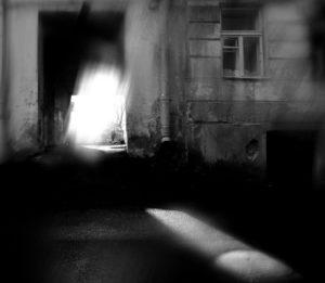 фото Али Грибовской